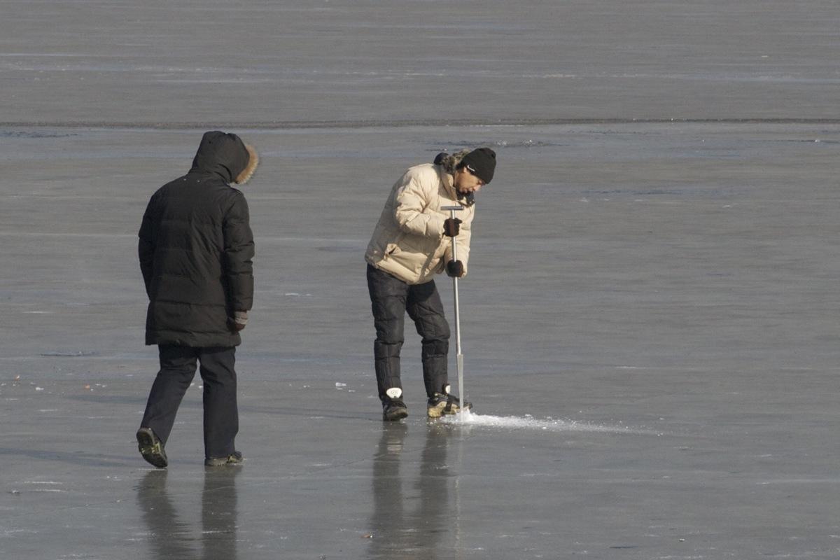 Wild duck lake 17 december 2011 birding beijing for Ice fishing hole