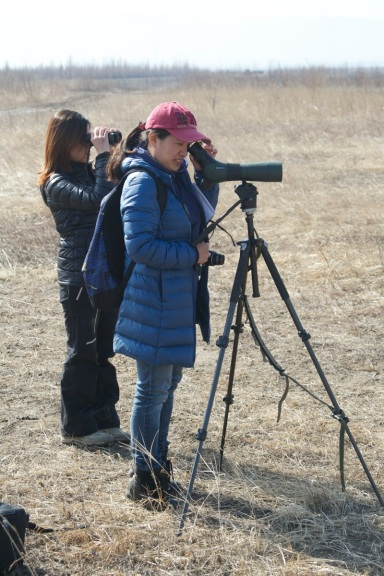Yuxia getting to grips with birding by watching a Baer's Pochard at Ma Chang in April.