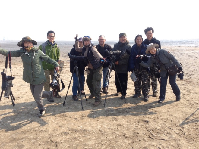 Birders at Hangu, Tianjin, on a high from seeing 10,000 Relict Gulls!