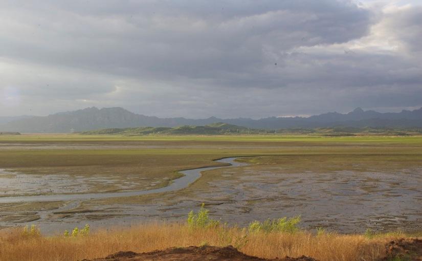 Valuing Wetlands inChina