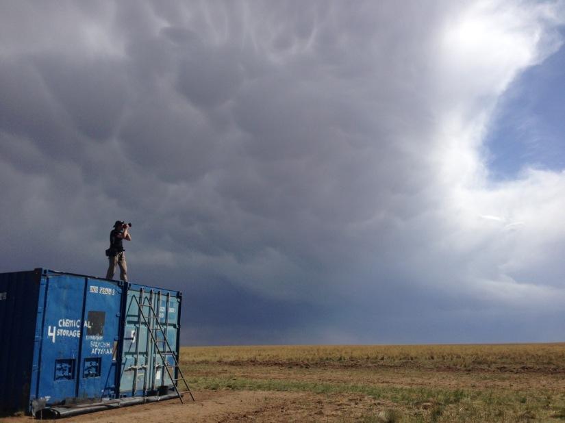Jankowski's Bunting Survey In Mongolia Draws ABlank