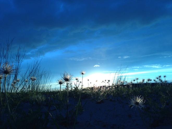 Mongolian Grasslands at sunset2