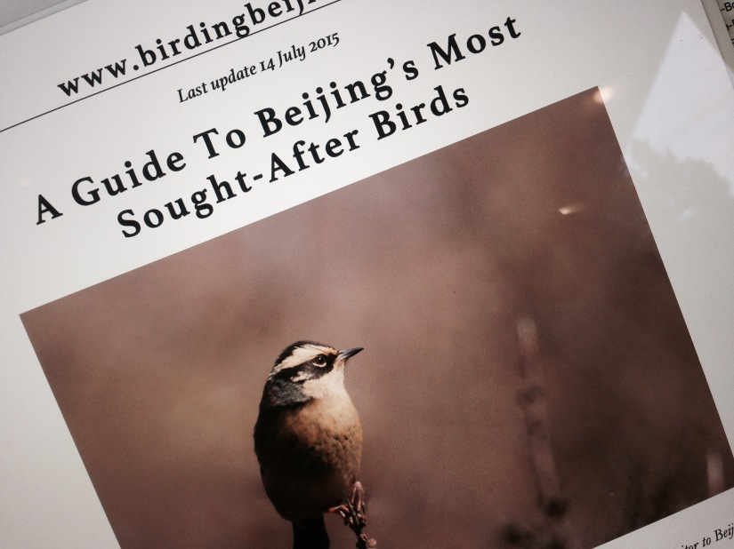 Downloadable PDF guides to Beijing's Birds Now Available!