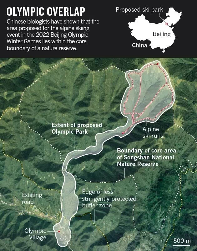 Source: Wang Xi/Songshan Natl Nature Reserve/2022 Beijing Olympic Winter Games Committee