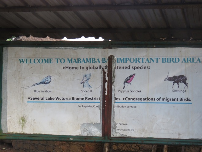 Mabamba is an Important Bird Area (IBA) and a Ramsar wetland site.