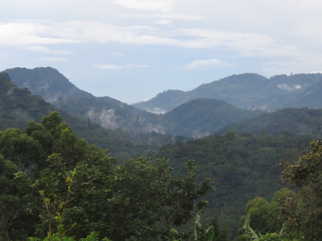 2015-11-15 Bwindi view from lodge