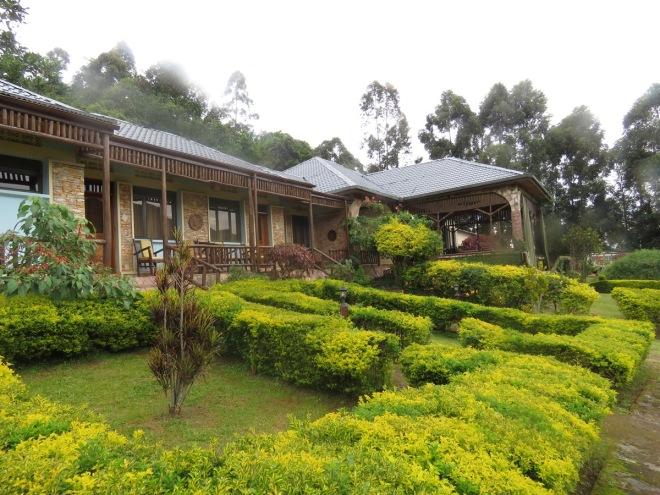 2015-11-15 Silverback Lodge