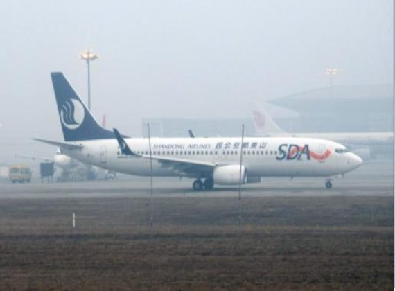 Mist Nets at Chinese Airports: Progress?