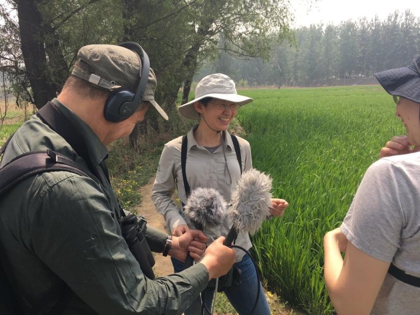 Birding with theBBC