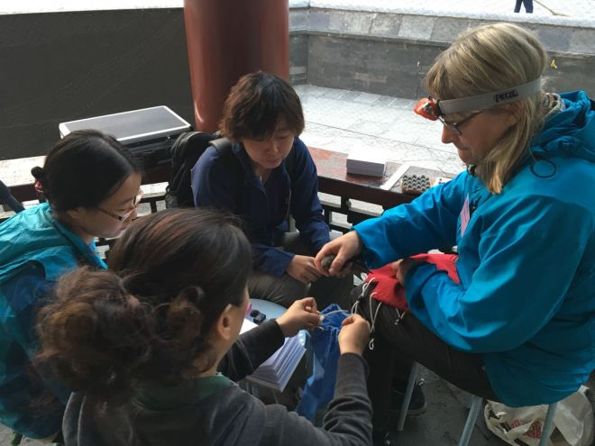 Susanne and her team of Chinese volunteers fitted an incredible 25 loggers to Swifts.