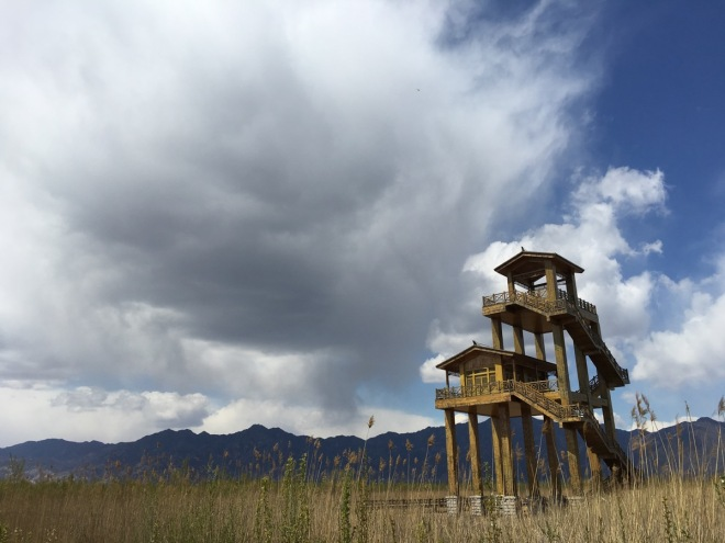 The impressive tower hide at Yeyahu National Wetland Park, one of Beijing's best birding sites.