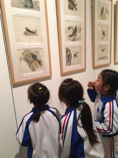 Exhibition of 19th Century Bird Art Opens In Beijing