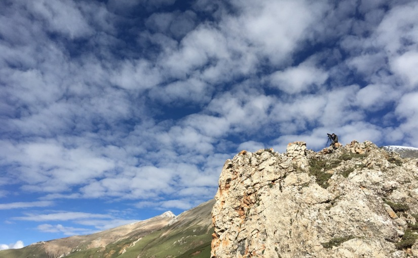 Snow Leopard Watching in Qinghai