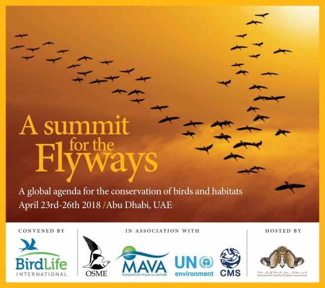 BirdLife International – Birding Beijing 北京观鸟