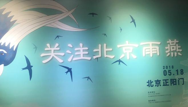 Beijing Swift exhibition title