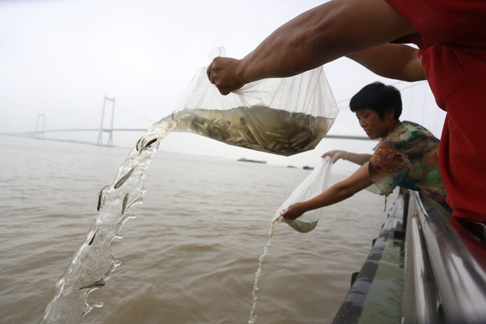 China vows to rehabilitate Yangtze River ecosystems
