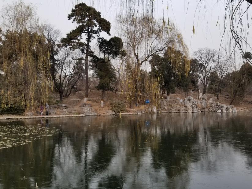 REDWING in Beijing