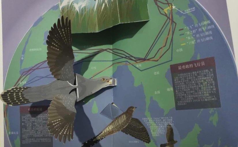 Beijing Cuckoos inspire new educational book forschools
